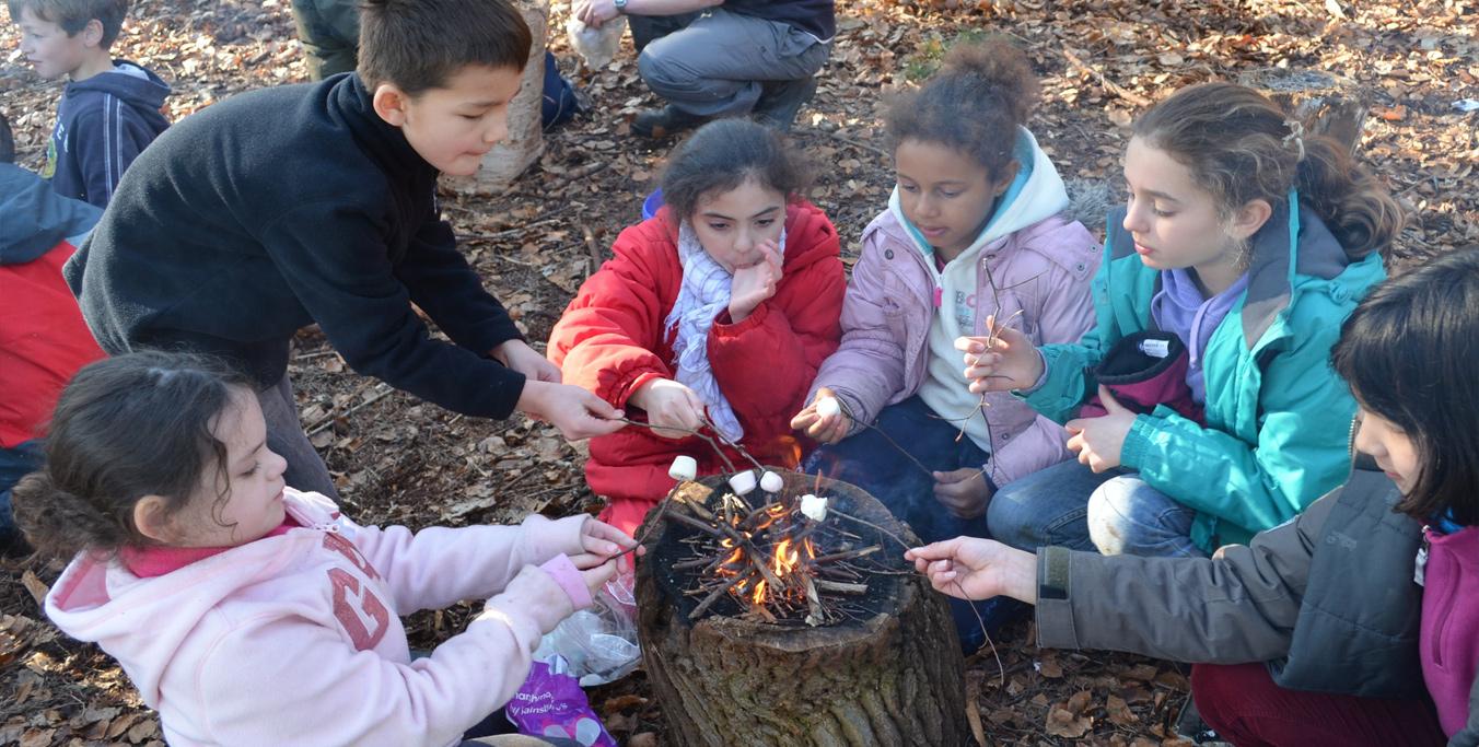 Wild Woodland Camp