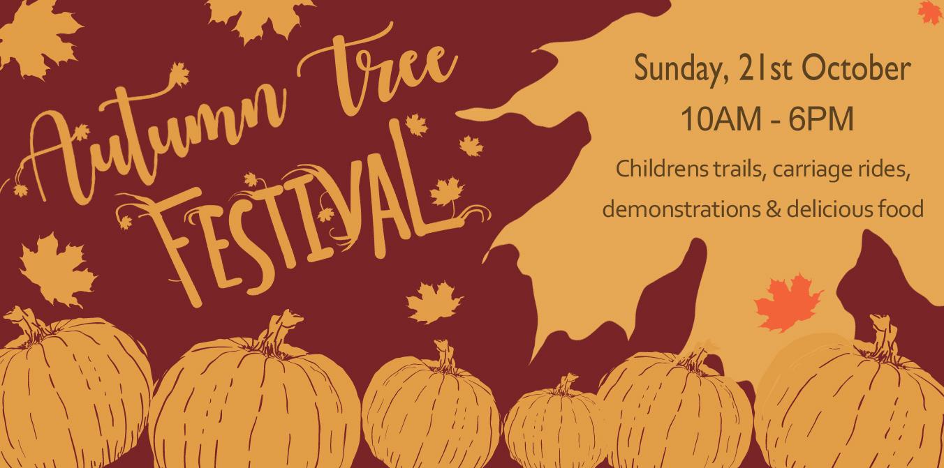 Autumn Tree Festival
