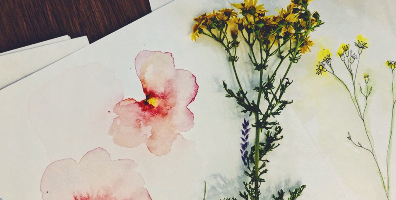 Botanical Drawing and Painting Workshop