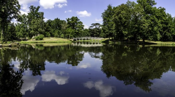 5 ways to support your wellbeing at Painshill