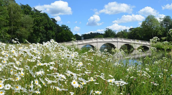 Painshill is Shortlisted for Garden of the Year 2020