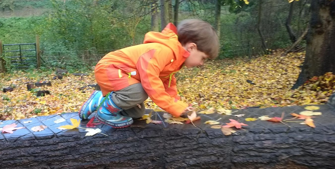 Autumn Specials: Parent & Child Forest School