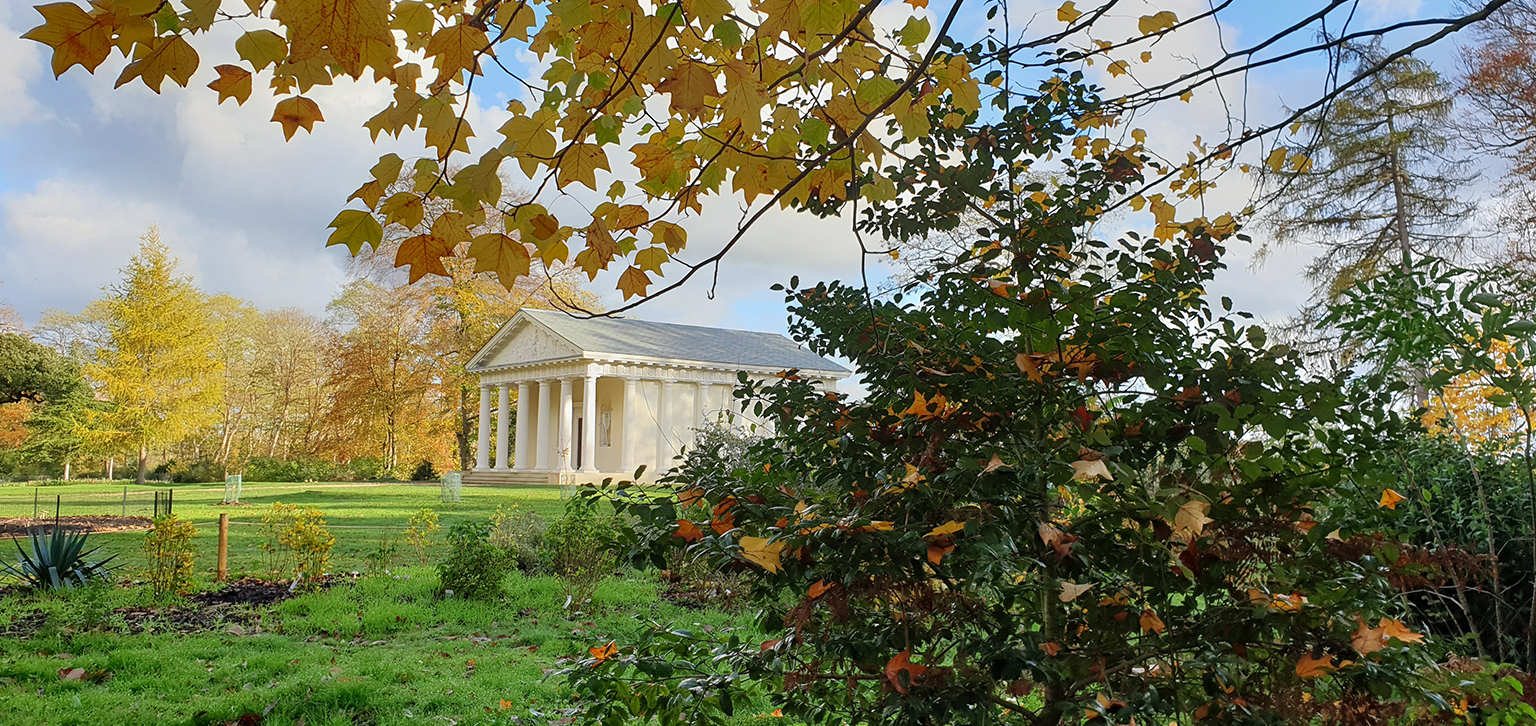 Autumn Shot of the Temple of Bacchus