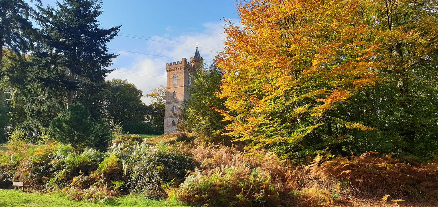 Gothic Tower in Autumn