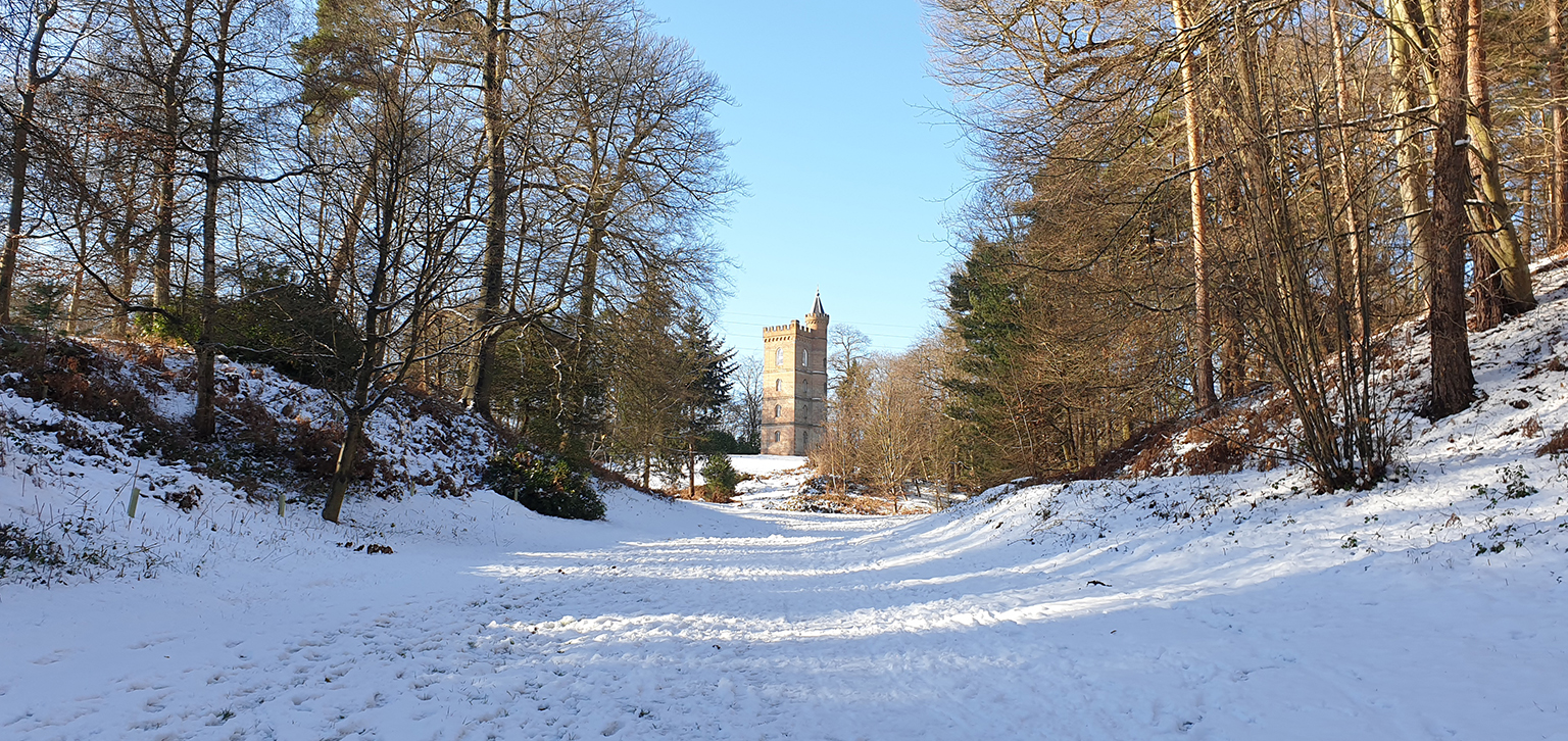 Gothic Tower in winter