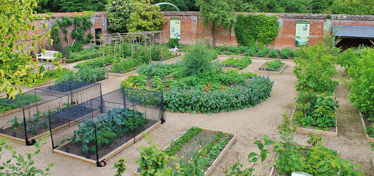 Kitchen garden at Painshill