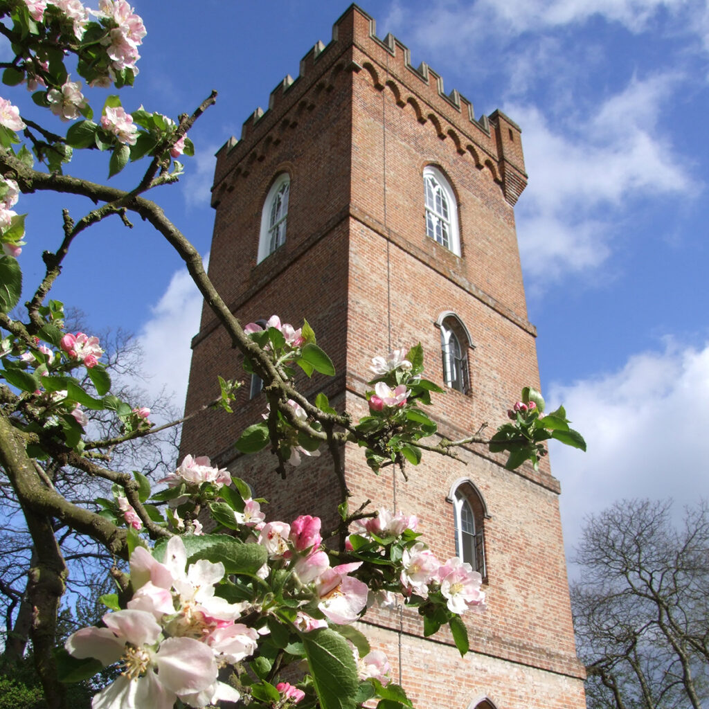 The Gothic Tower and Cafe