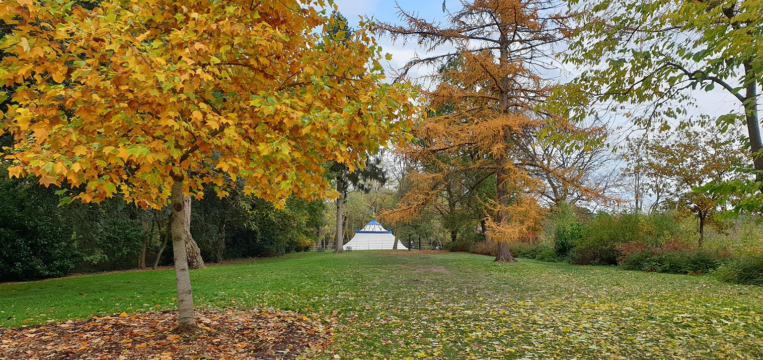 Turkish Tent in Autumn