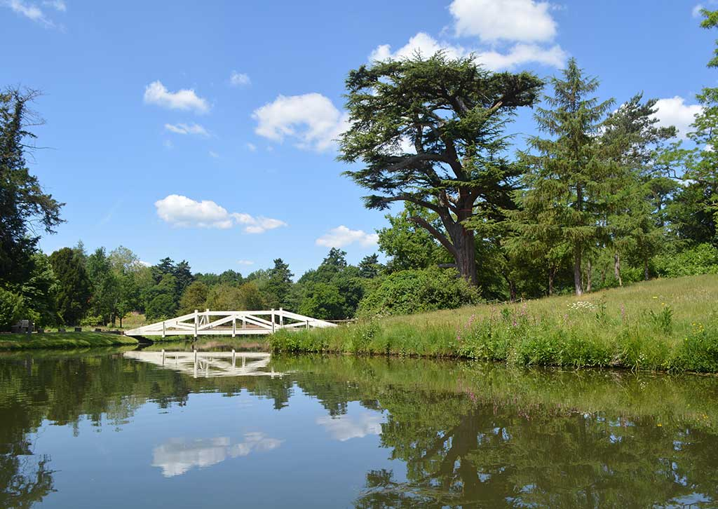 Painshill - getting to us