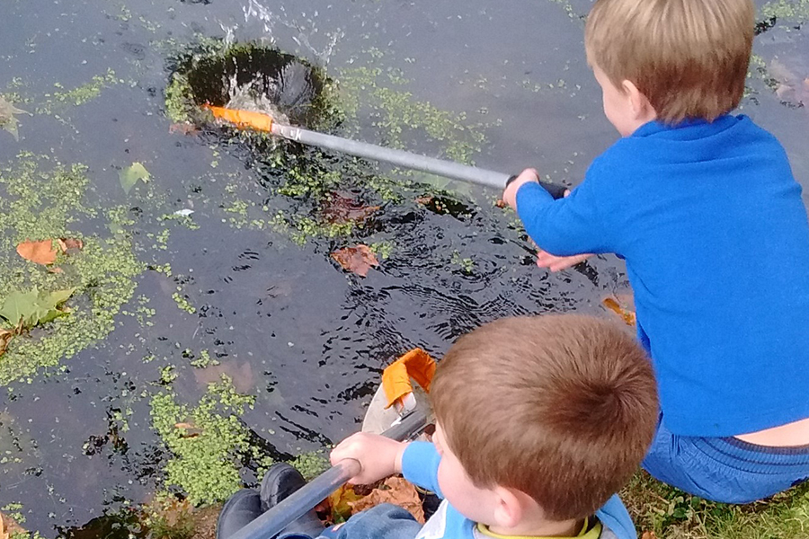 Key Stage 1 pond dipping