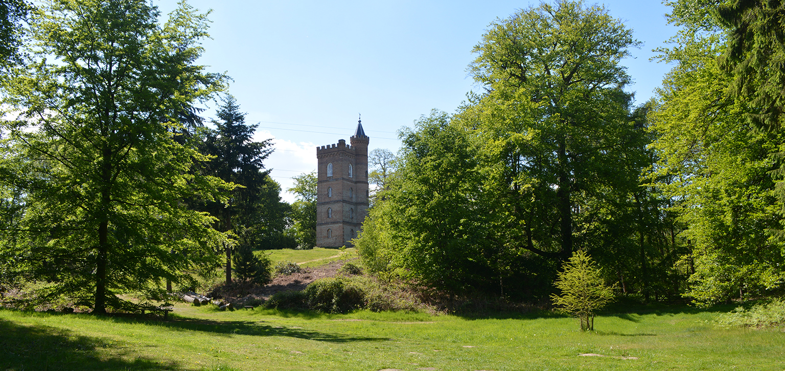 View of tower in summer