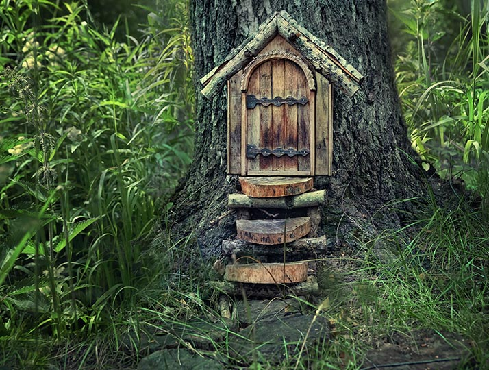 Fairy Door Trail